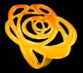 reportage mariage Logo